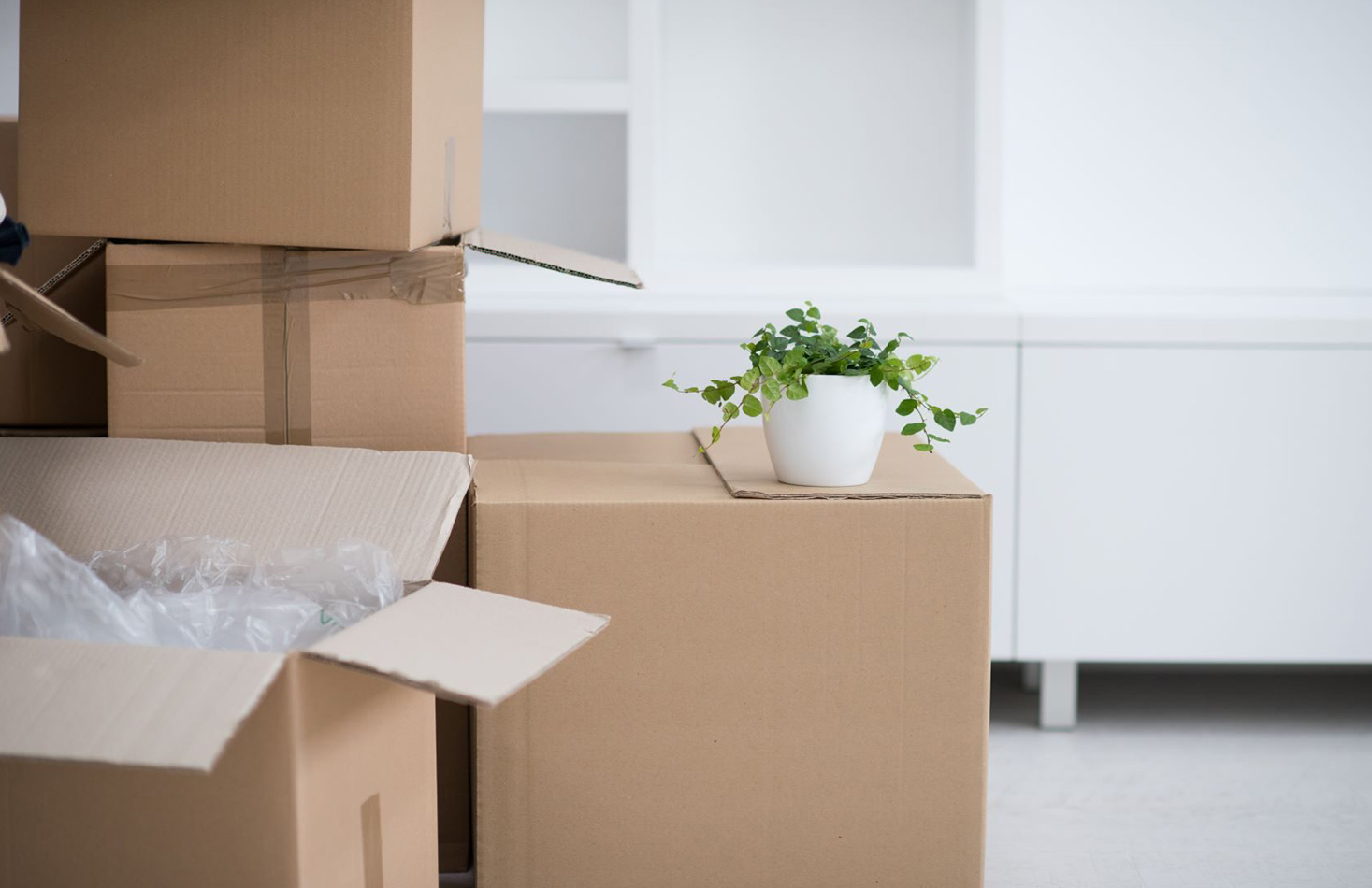 Factors Involved in Moving